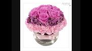 Едно прелестно цвете...розата