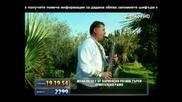 хисто коритаров тинко и соня ивабови-българка