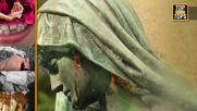 Тайните, които крият статуите