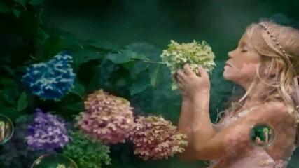 Цветя за сърцето - Хортензия! ... (music by Tim Janis)