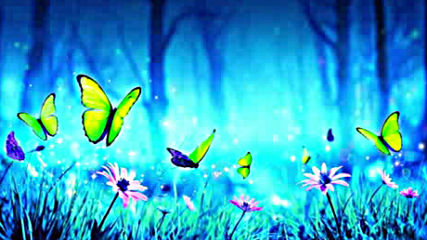 Celtic Fantasy Music Butterfly Night Enchanted Magical Nature 1 hour