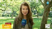 """ЗАРАДИ БУРИ И ГРАДУШКИ: Код """"жълто"""" в Северозападна България"""