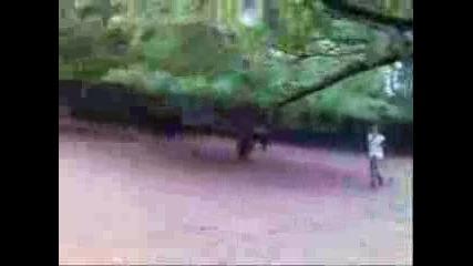 Пощуряло Момче В Зоопарка