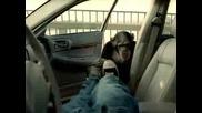 Смешна Реклама На Аларма За Кола С Маймуна