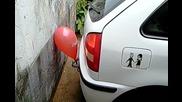 Щур паркинг сензор на кола за еднократна употреба! Смях