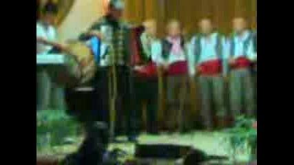 Старцево Концерт