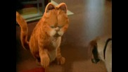 Лудата котка Гарфилд играе кючек