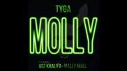 Tyga ft. Wiz Khalifa & Mally Mall - Molly