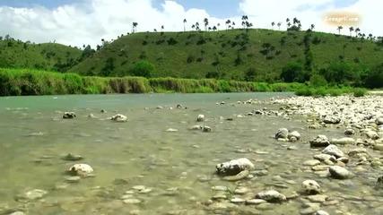 Красотата на природата - Карибски острови ( Hd video )