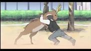 Супер забавно Amv - Anime Crack
