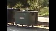 Циганка в кофа за боклук