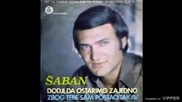 Saban Saulic - Zbog tebe sam postao takav - (Audio 1978)