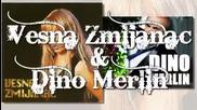 Vesna Zmijanac & Dino Merlin - Kad zamiri