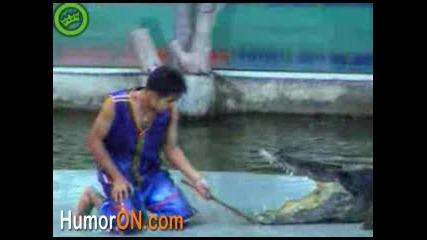 Крокодил Напада Човек