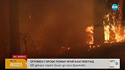 ПОЖАРЪТ В БЛАГОЕВГРАДСКО: Огънят гори на 500 м от село Дренково
