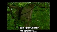 Rednex - Hold Me For A While Превод