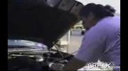 Невероятно - Хора Намират Мъртва Котка В Колата Си