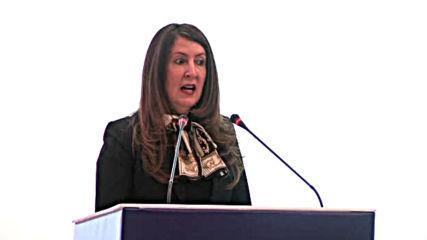 Американският посланик: Пращаме енергийни експерти от САЩ в България