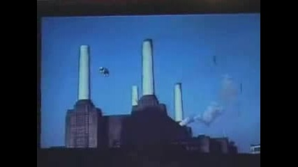 Pink Floyd Pigs On The Wing