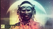 Dimitri Vegas & Like Mike - Wakanda