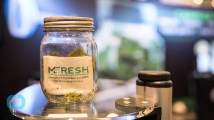 OREGON MARIJUANA FANS LOOK TO MAKE CASH WITH NEW LAWS
