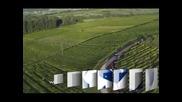 Тежка катастрофа на Петер Солберг в рали Франция