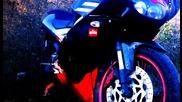Моториститее 3