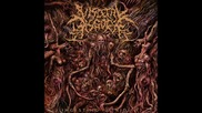 Visceral Disgorge - Spastic Anal Lacerations