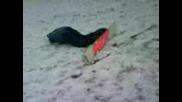 Ko6mara Se Meta Ot Snowborda