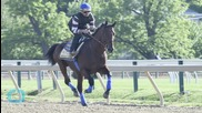 American Pharoah Wins 140th Preakness Stakes