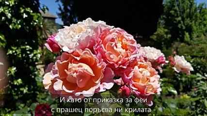Прекрасният Юни - стих, пожелание