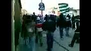 Тича - Зелено Шествие ! Всичките Плебеи В Каменар