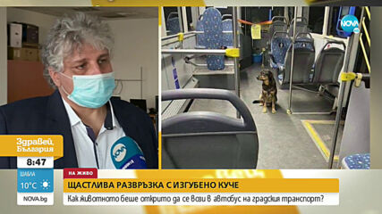 ЩАСТЛИВА РАЗВРЪЗКА: Изгубено куче беше открито да се вози в автобус на градския транспорт