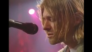 Nirvana - Pennyroyal Tea (unplugged)