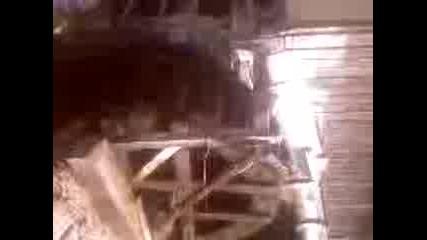 Video - 0011