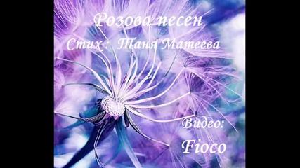 Розова песен - Таня Матеева