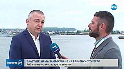 Властите: Няма замърсяване във Варненското езеро