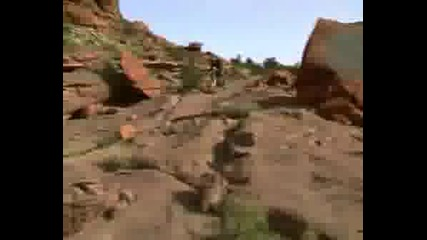 Downhill Roam
