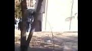 Мрамора бе залят от спукана водопроводна тръба