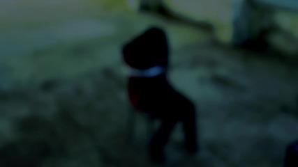 Боби Кинта - Колко Пъти / Zanimation 2014 (teaser)