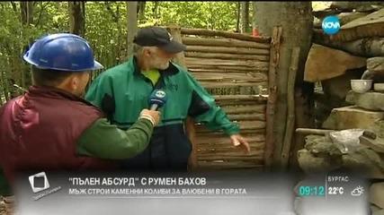 """""""Пълен абсурд"""": Колиби за подслон на влюбени в гората"""