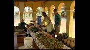 Travel, Холандски Антили, Bonaire