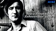 Toma Zdravkovic - Zaboravljam pesmu