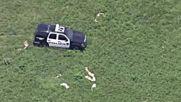 Пилот на полицейски хеликоптер залавя бандит