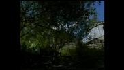 Magic of th Rhodopes mountains - Bgizlet.com - clip