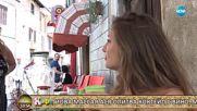 Какви са здравословните ползи от над 40-те вида мента отглеждани в Италия - На кафе (06.06.2018)