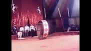 22.IX.2005 - Цирк Aрена