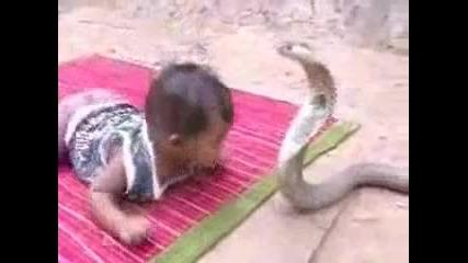 детето и змия