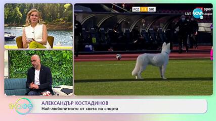 Александър Костадинов: Най-любопитното от света на спорта - На кафе (02.03.2021)