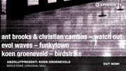 Abzolutpresent- Koen Groeneveld - Birdstrike (original Mix)